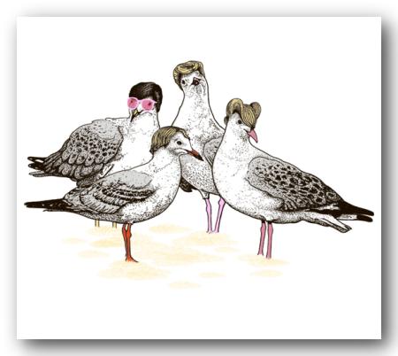 flock_of_seagulls_thread_shade